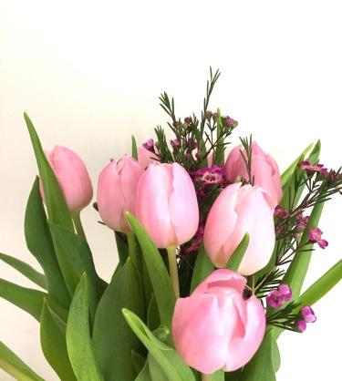 2017 03 tulips.JPG